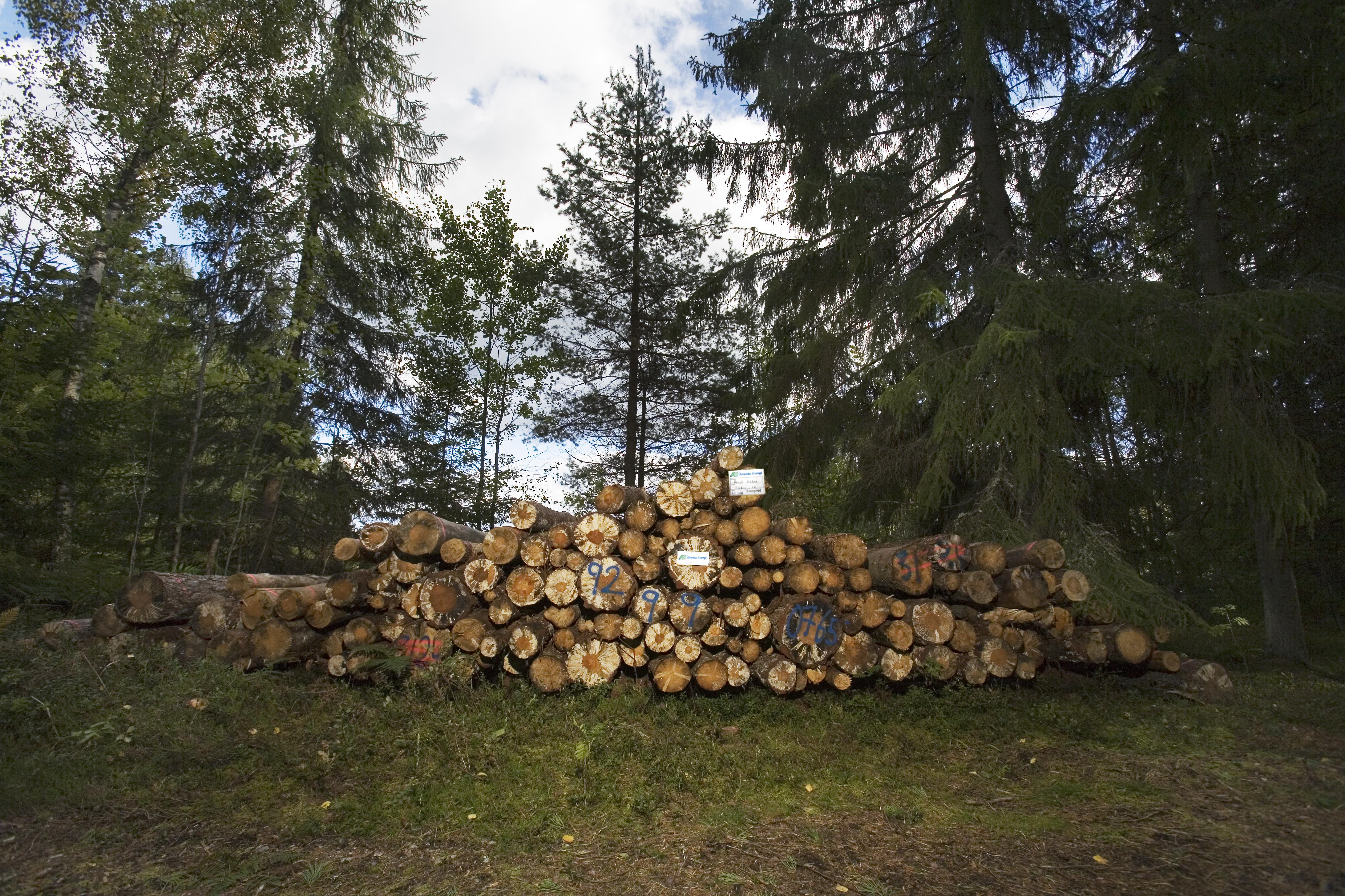 Alvesta Energi först i Småland med småskalig kraftvärme